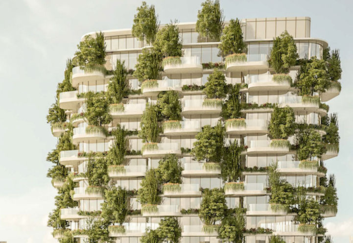 Skyline View of Tree-Covered Terraces at Designers Walk Condos with